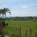 Pasific view van op ons terras