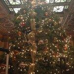 Christmas tree in foyer