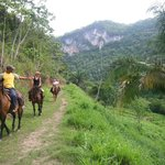 Horseback Riding up the Macal River Cab