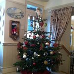 looking lovely and festive in Baldrys today!