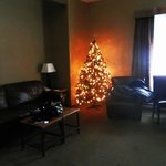 living room with festive tree
