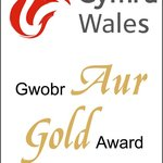 Gold Award for Excellence - two in two years!