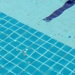 mosaic tiles coming off pool not been cleaned for long time judging by all the tiles on the swim