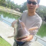 smaller catfish