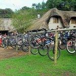 Giba Gorge Mountain Bike Park
