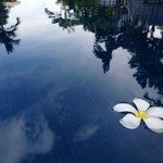 Foto de Rising Sun Residence