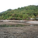 beach at low tide,lots of corals and rocks