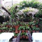 restaurant in the garden