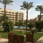 vue de l espace piscine avec palmier
