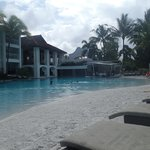 From the pool