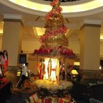 the christmas tree @ the lobby