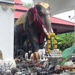 Nice elefant stand.