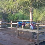 ChampagnesCajunSwamptours has back deck's on water,for seating,and loading area for tour boat's.