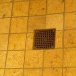 Industrial drain in fancy shower...