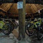 Estacionamiento de bicicletas