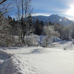 Snowy pond in the sun on the walk to Linderhof