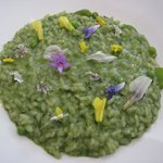 Extraordinary looking but absolutely delicious risotto with 'blossoms'