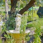 Quiet stroll in the Herb Garden