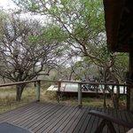 Blick vom Elephant Room auf Pool-Bereich