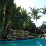 large , tropical pool area
