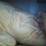 More soiled bedding
