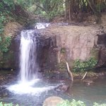 The waterfall