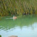 Lagoon fun