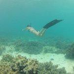 Gadie Barro freediving Alona Beach Housereef
