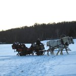 Sleigh Rides on the Property