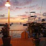 harbor vew