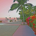 Harbor walk in front of Hyatt Sunset Harbor
