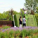 Devant la mosaïculture de la Flore laurentienne | Mosaiculture