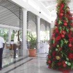 el arbol de navidad del hall