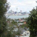 Blick auf Auckland von Victoria Mountain