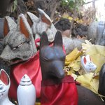 The Foxes at the Anamori Inari Shrine
