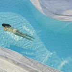 Enjoying swimming
