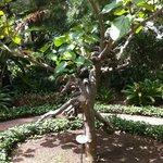 Gardens closeby