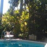Gardens poolside