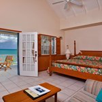 Standard One Bedroom Villa Suite