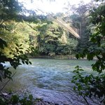 Selva Verde on the Sarapiqui
