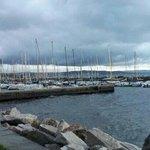 un polmone di Trieste