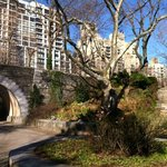 Carl Schurz Park garden with the East River to my back