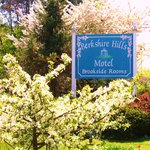 Flowering trees and gardens grace our property
