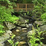 Our bridge leads you over Hemlock Brook