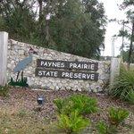 Paynes Prairie entrance