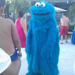 COOKIE MONSTER IS MY FAV