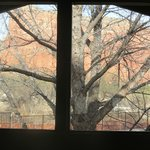 view from loft window in chalet