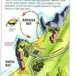 SCUBA Map