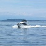 Enjoy a boat ride on the Puget Sound