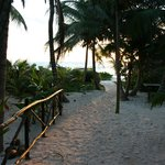 Sunrise on the path to the beach from Pajaro Azul